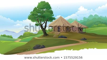 Path to the huts Stock photo © Kotenko
