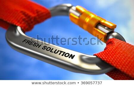 Chrome Carabiner Hook with Text Fresh Solution. Stock photo © tashatuvango