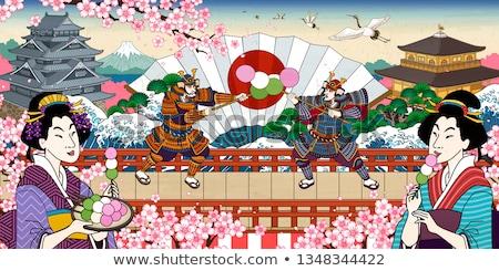 Engraçado gueixa Japão ilustração flores paisagem Foto stock © adrenalina