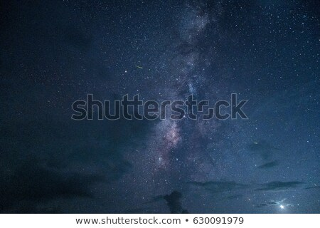 Real Night Landscape with Milky Way and Stars Stock photo © Taiga