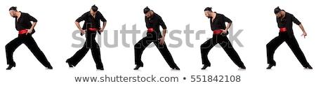 salsa · férfi · táncos · pózol · egészalakos · férfi - stock fotó © elnur