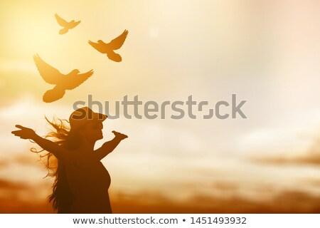 faith or freedom stock photo © stocksnapper