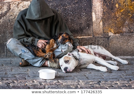 Hajléktalan férfi kutya utca munkanélküliség vékony Stock fotó © mangsaab