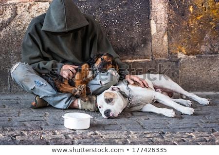 Homeless man with a dog on street. stock photo © mangsaab