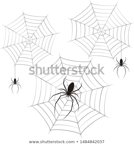 Spider frame scary halloween ragnatela party Foto d'archivio © SwillSkill