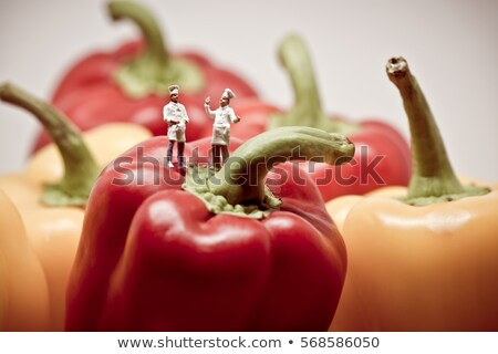 Two chefs debating over bell peppers. Macro photo stock photo © Kirill_M