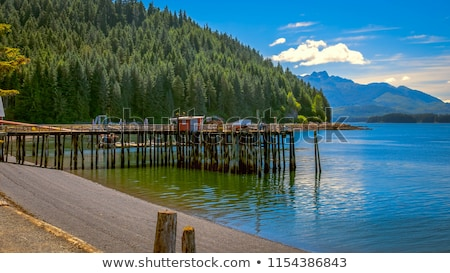 Gelado ponto Alasca EUA cênico paisagem Foto stock © saddako2