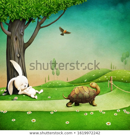 rabbit and turtle running in the field stock photo © bluering