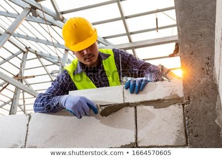 Budowniczy murarz pracownik budowlany narzędzie cartoon czarny Zdjęcia stock © Krisdog