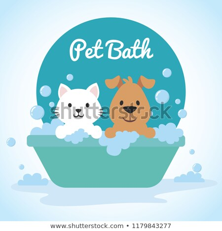 Cat in bath. Pet is washed. Vector illustration Stock photo © popaukropa