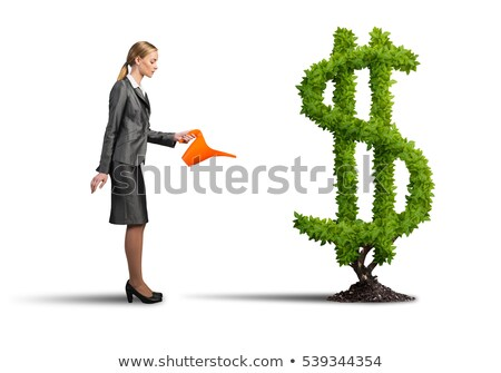 Businesswoman watering plant Stock photo © IS2