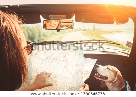 Young people with convertible car looking at map Stock photo © IS2