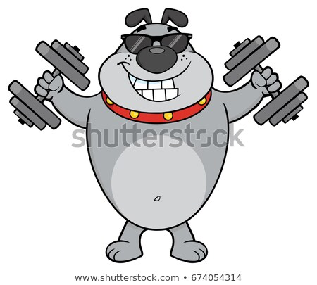 Stock foto: Smiling Gray Bulldog Cartoon Mascot Character With Sunglasses Working Out With Dumbbells