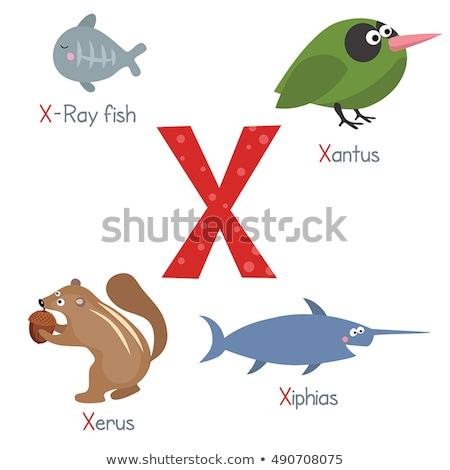 letter x for xiphias cartoon alphabet for children stock photo © robuart