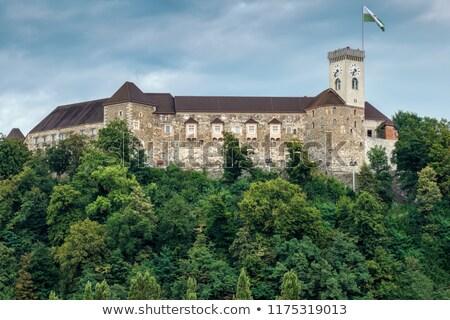 Clock torre castello città bandiera Slovenia Foto d'archivio © boggy