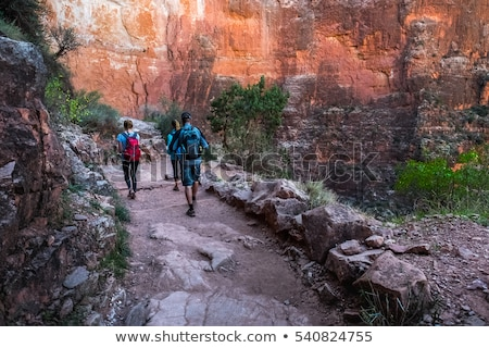 group of friends with backpacks at grand canyon Stock photo © dolgachov