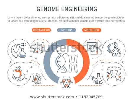 Genetically modified organism concept landing page. Stock photo © RAStudio
