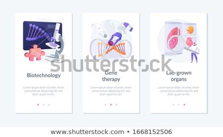Organi app interfaccia modello scienziati crescita Foto d'archivio © RAStudio