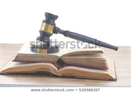 Gavel Over Opened Law Book Stock photo © AndreyPopov