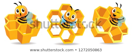Cartoon cute bee mascot with honey cells set. Cartoon cute bee with big Honey Cells. Honeycomb vecto stock photo © charactoon