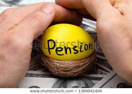 Human Hand Protecting Nest With Pension Text On Egg Stock photo © AndreyPopov