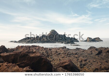 Ocean foreground with rocks Stock photo © bluering