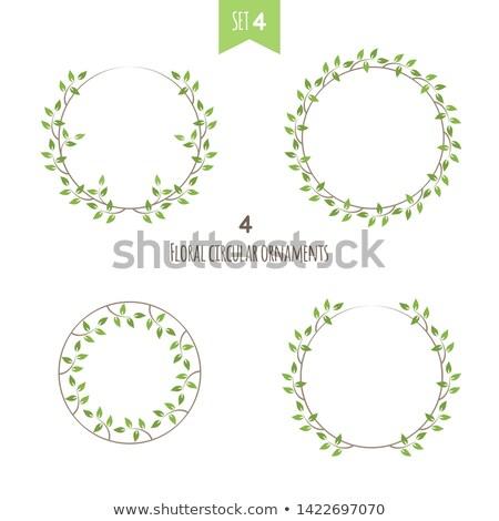 Virágmintás körkörös díszek negyedik szett négy Stock fotó © Imaagio