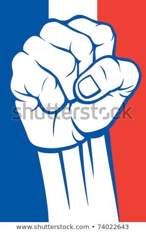 Avrupa siyasi kavga avrupa seçimler Stok fotoğraf © Lightsource