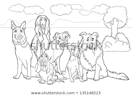 differences color book with dogs animal characters stock photo © izakowski