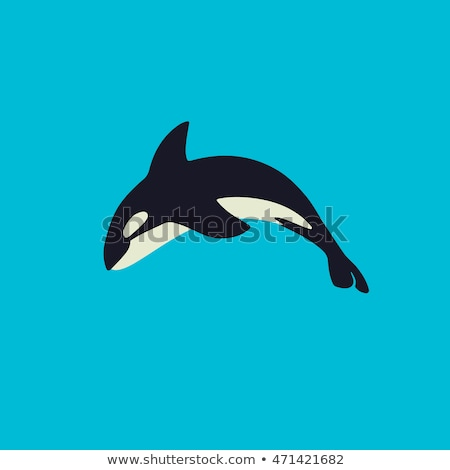 Killer Whale Cartoon Flat Vector Illustration Stock photo © robuart