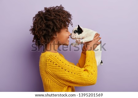 Happy relaxed lovely young woman with Afro hairstyle, petting dog, sit together on bed with white be Stock photo © vkstudio