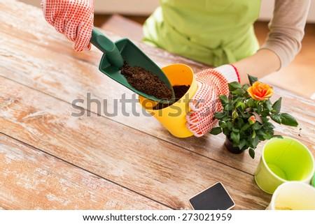женщину заполнение почвы лет саду садоводства Сток-фото © dolgachov