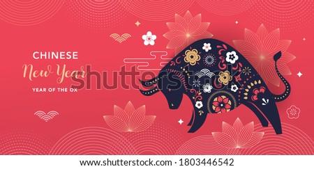 旧正月 実例 豚 面白い 中国語 ピンク ストックフォト © adrenalina