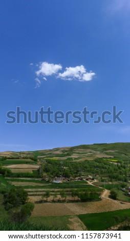 tájkép · csetepaté · fák · gazdálkodás · kék · ég · fa - stock fotó © meinzahn