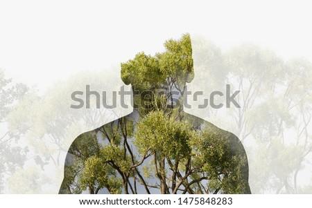 Tájkép zöld fű föld szépség nyár Stock fotó © Witthaya