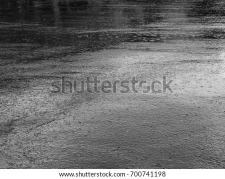 víz · fa · tükröződések · napfény · sáros · föld - stock fotó © meinzahn