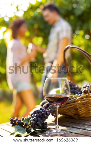 Farmer and wife drinking wine in a vineyard Stock photo © photography33