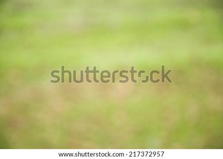 çim · görüntü - stok fotoğraf © stocksnapper