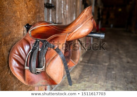 Brown shabby leather saddle with black bridles hanging on steel bar Stock photo © pressmaster