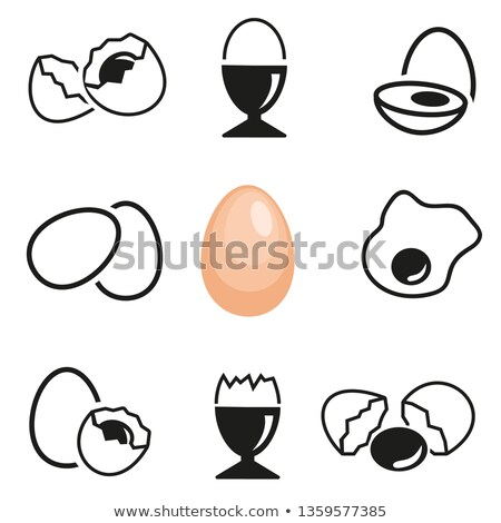 vector collection of eggs Stock photo © freesoulproduction