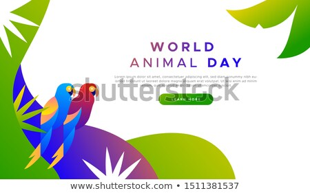 Animal day landing page template of exotic birds Stock photo © cienpies