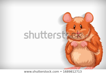 Background template with plain color and cute hamster Stock photo © bluering