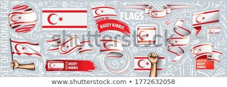 Vector ingesteld vlag Cyprus creatieve Stockfoto © butenkow