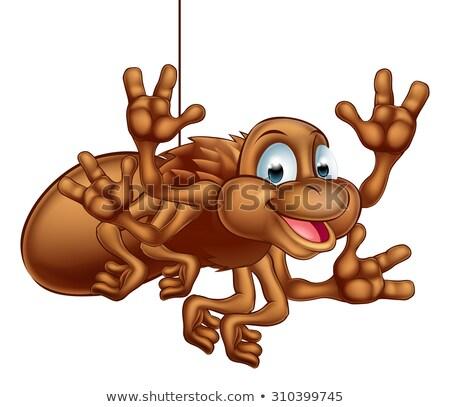 幸せ ハロウィン クモ ウェブ ベクトル 画像 ストックフォト © damonshuck