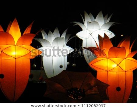 Geel · papier · lantaarns · tempel · lotus - stockfoto © dsmsoft