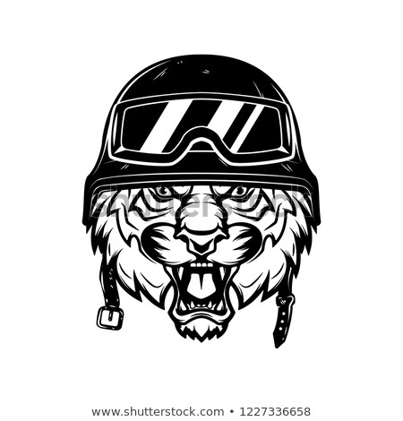 Stock photo: Racing Tiger Mascot Graphic Vector Image