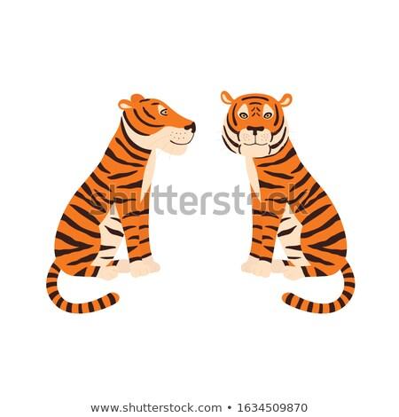 Photo stock: Graphique · vecteur · image · heureux · cute · tigre