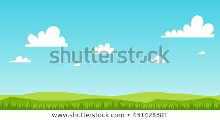 草 空 花 雲 自然 風景 ストックフォト © WaD
