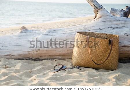 strand · zakken · kleurrijk · speelgoed · zand - stockfoto © ivonnewierink