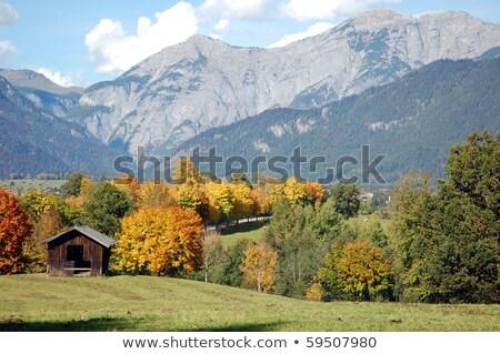 autumn hiking in the austrian alps stock photo © haraldmuc